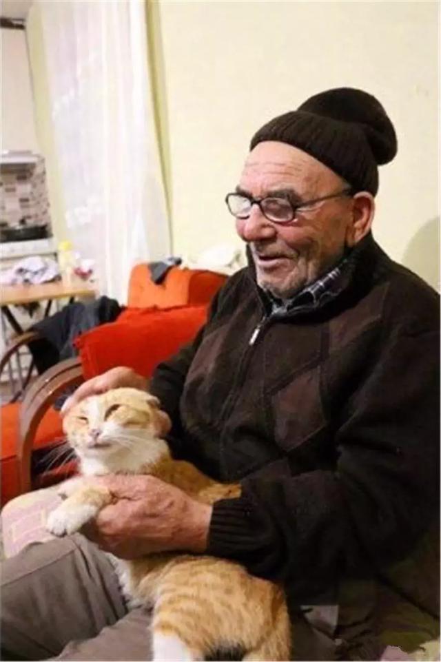 爺爺家中遭遇大火,抱著倖存貓咪默默痛哭,如今和小貓共度餘生!