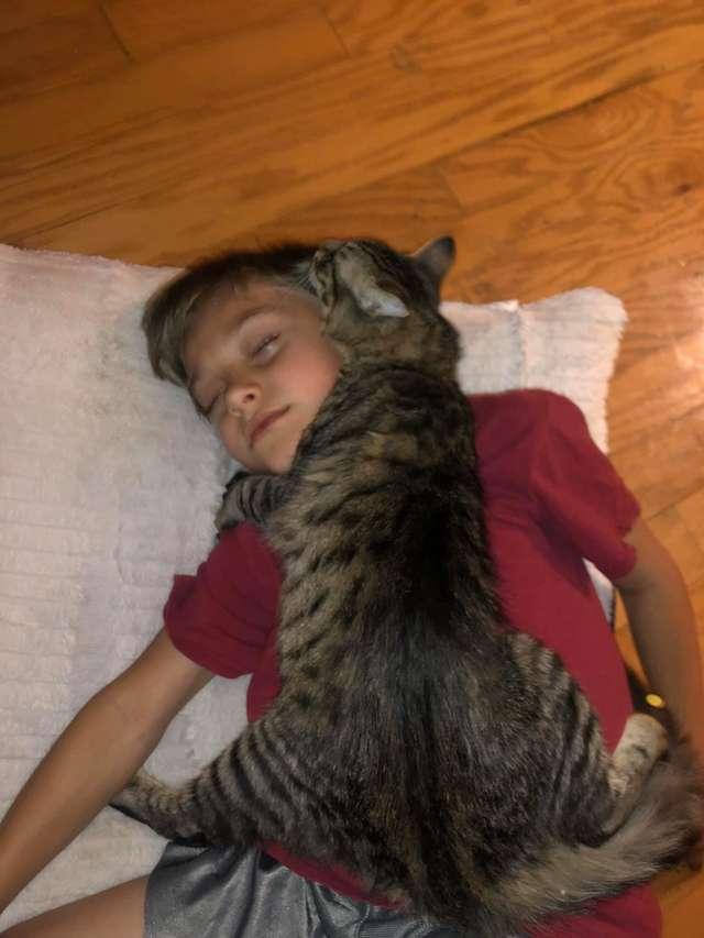 養貓後,小男孩徹底淪為「貓窩」!貓咪總愛抱著他睡覺